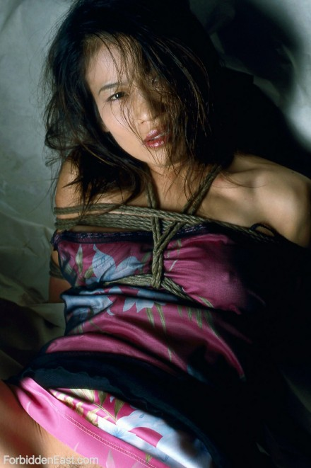 Authentic Japanese BDSM Photos Of The Day