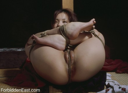 Authentic Japanese Bondage Photos Of the Day